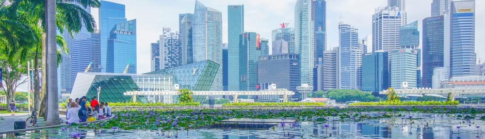 Investing for Singapore Expats